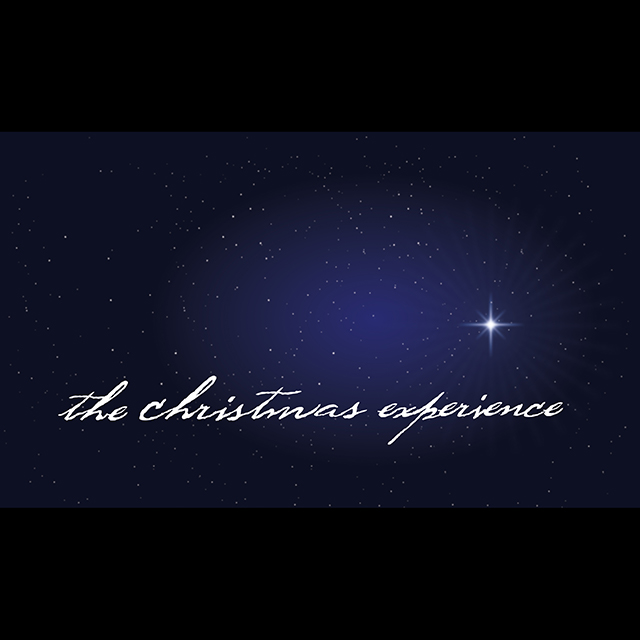 christmas_experience_SQ